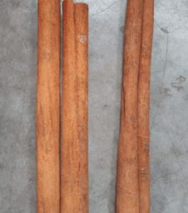 Arunachal cinnamon bark Rs 200 per Kg