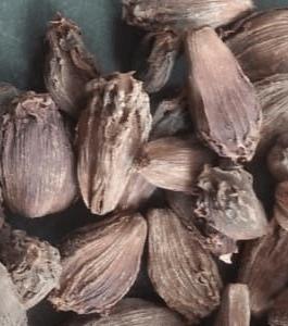 Black cardamom dhup wala Rs. 520 Per Kg